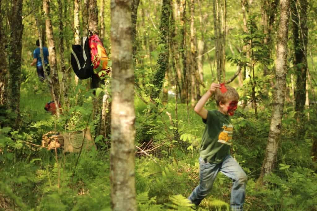 woodland creatures8
