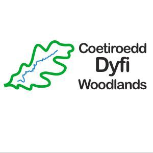 dyfi woodlands logo